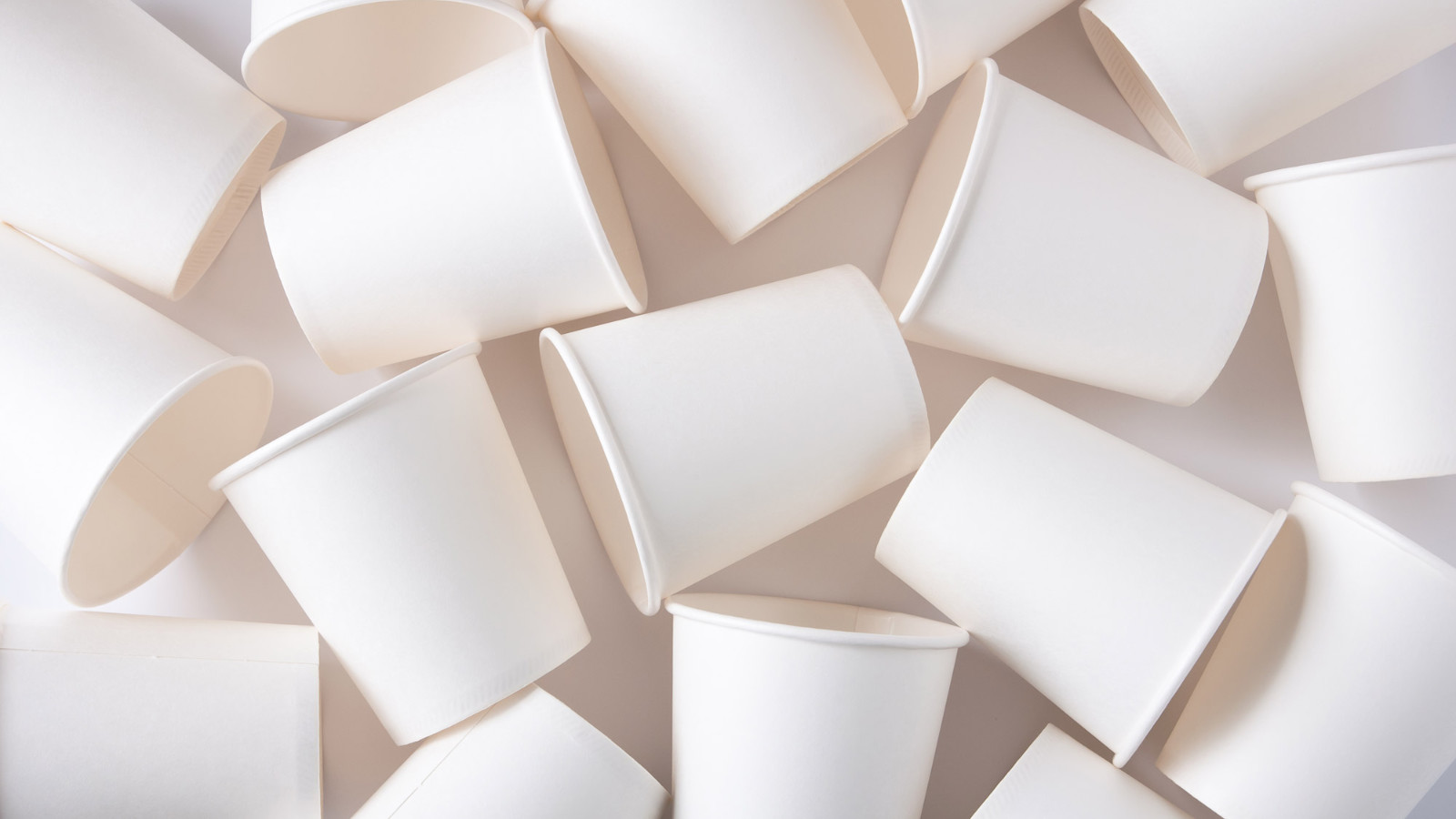 turn to bio based innovation to alleviate disposable coffee cup